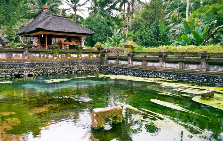Ubud cheap hostels book a budget hostel in ubud for Cheap hotels in bali indonesia