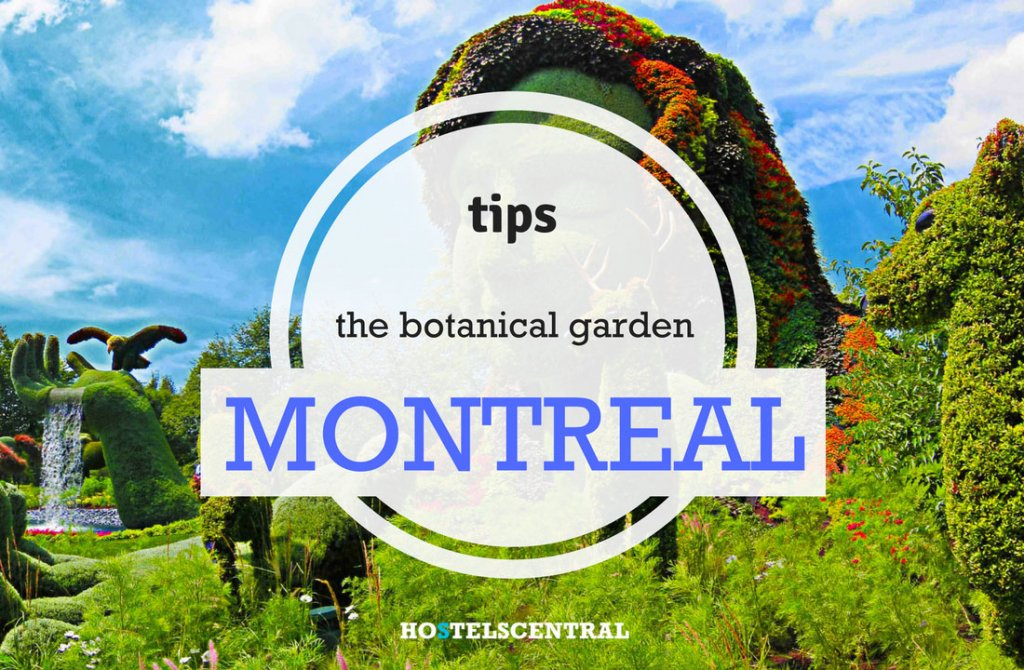 but also the man can realize things that leave you speechless such as those that can be admired at the botanical garden of montreal - Montreal Botanical Garden