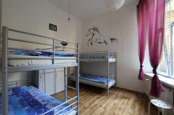 Hostel Yellow Krakow Poland Hostelscentral Com En